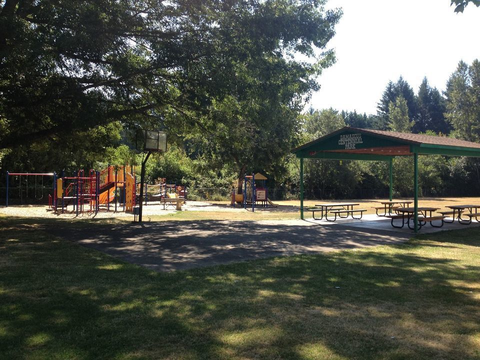 Help Clean Up the Damascus Park